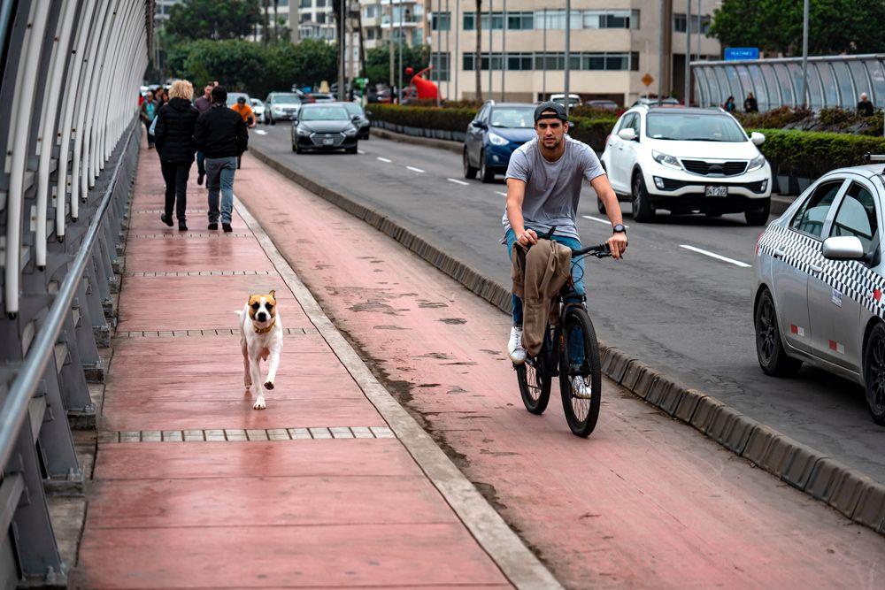 ¿Eres ciclista?: Conoce el nuevo reglamento que debes seguir para manejar bicicleta seguro